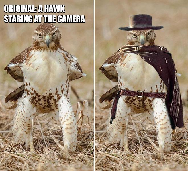 Funny photoshopped pic.