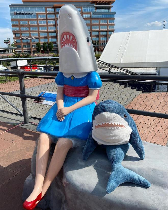 Adventures with IKEA's BLÅHAJ shark toy.